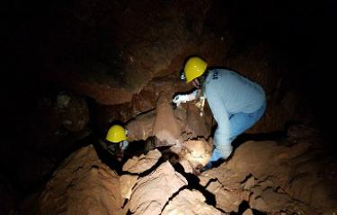 Fountain Cave Adventure Tours