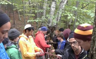 Teamlink/Shenandoah Mountain Guides